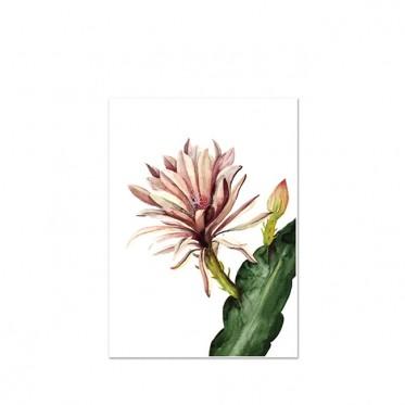 red-cactus-kunstdruck-leo-la-douce-a3.jpg